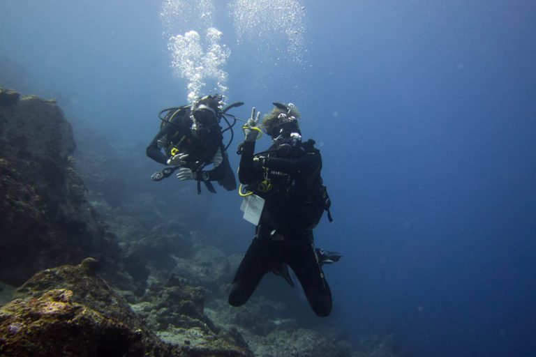 course discoverScubeDiving