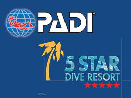 news padi5stardiveresort