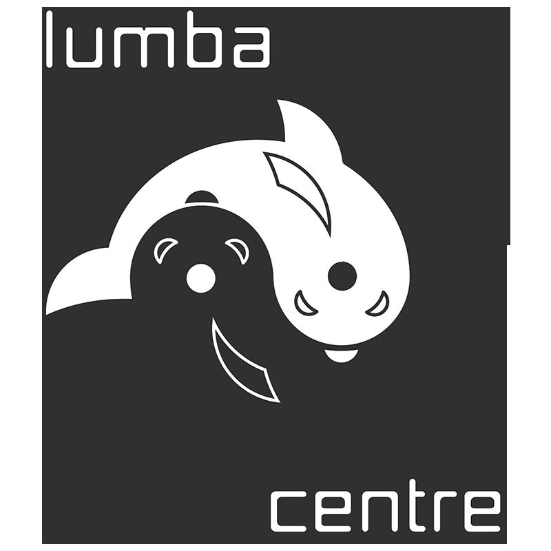 Get To Pulau Weh Sumatra Indonesia Lumba Lumba Diving Centre
